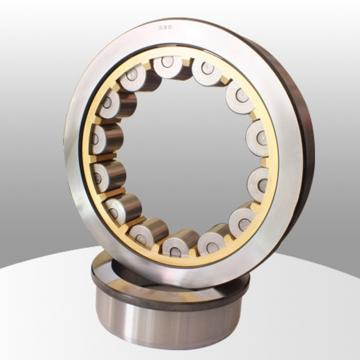 SL01 4876 Cylindrical Roller Bearing 380*480*100mm