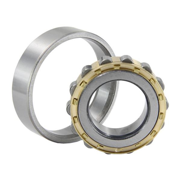 NUP2310 Cylindrical Roller Bearing 50*110*40mm #1 image