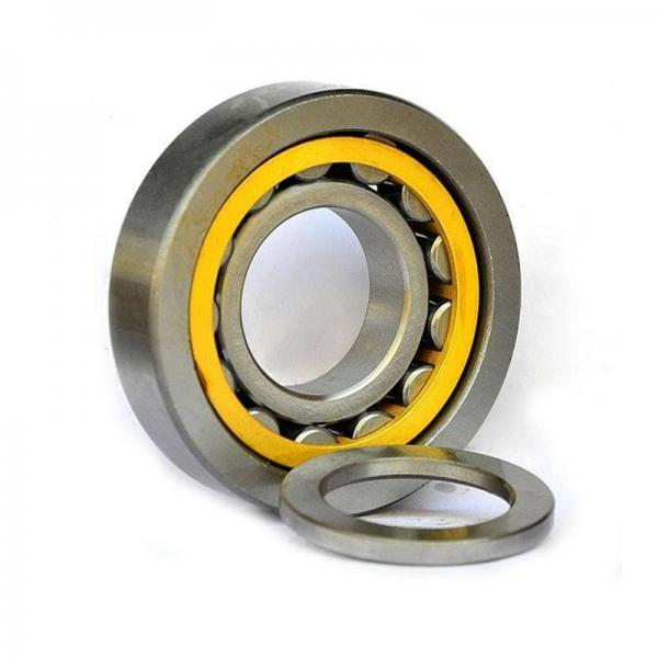 N1018 Cylindrical Roller Bearing 90X140X24mm #1 image