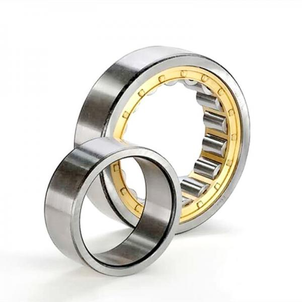 RSF-4976E4 Double Row Cylindrical Roller Bearing 380x520x140mm #2 image